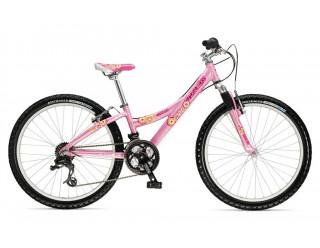 Подростковый велосипед Trek MT 220 Girls (2008)